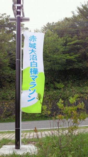 NEC_0814.JPG