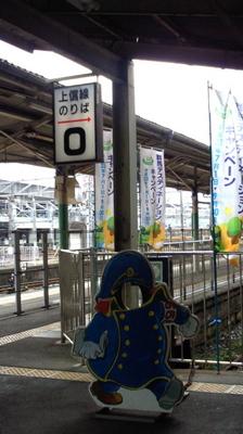 NEC_0923.JPG